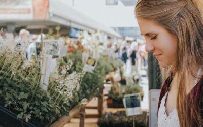 Jak wypromować lokalny biznes?